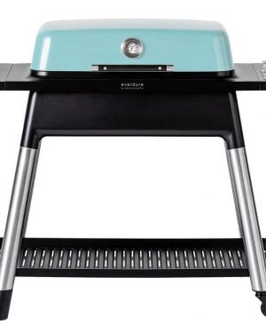 Everdure Furnace Mint - Barbecuenu.nl