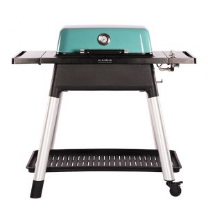Everdure | Gas BBQ FORCE | Mint | Incl. Stand - Barbecuenu.nl